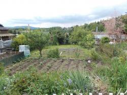 Zahrada (Prodej)